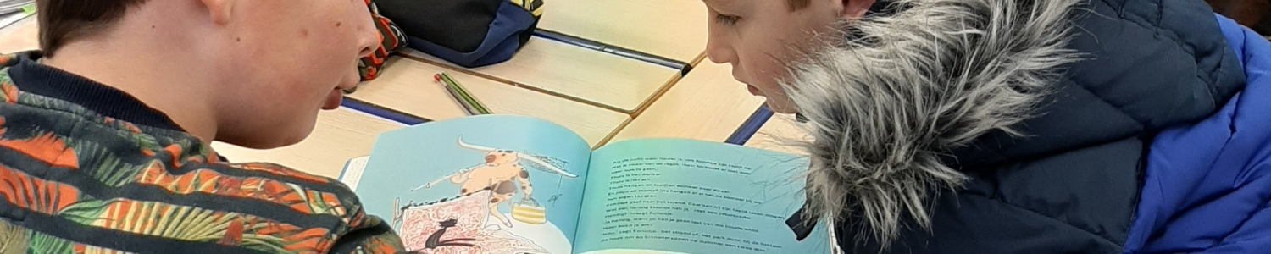 Partnerlezen met het zesde leerjaar